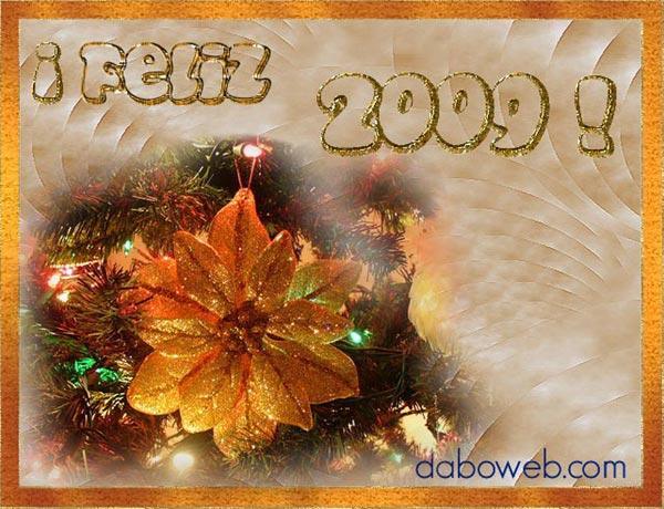 2009-daboweb